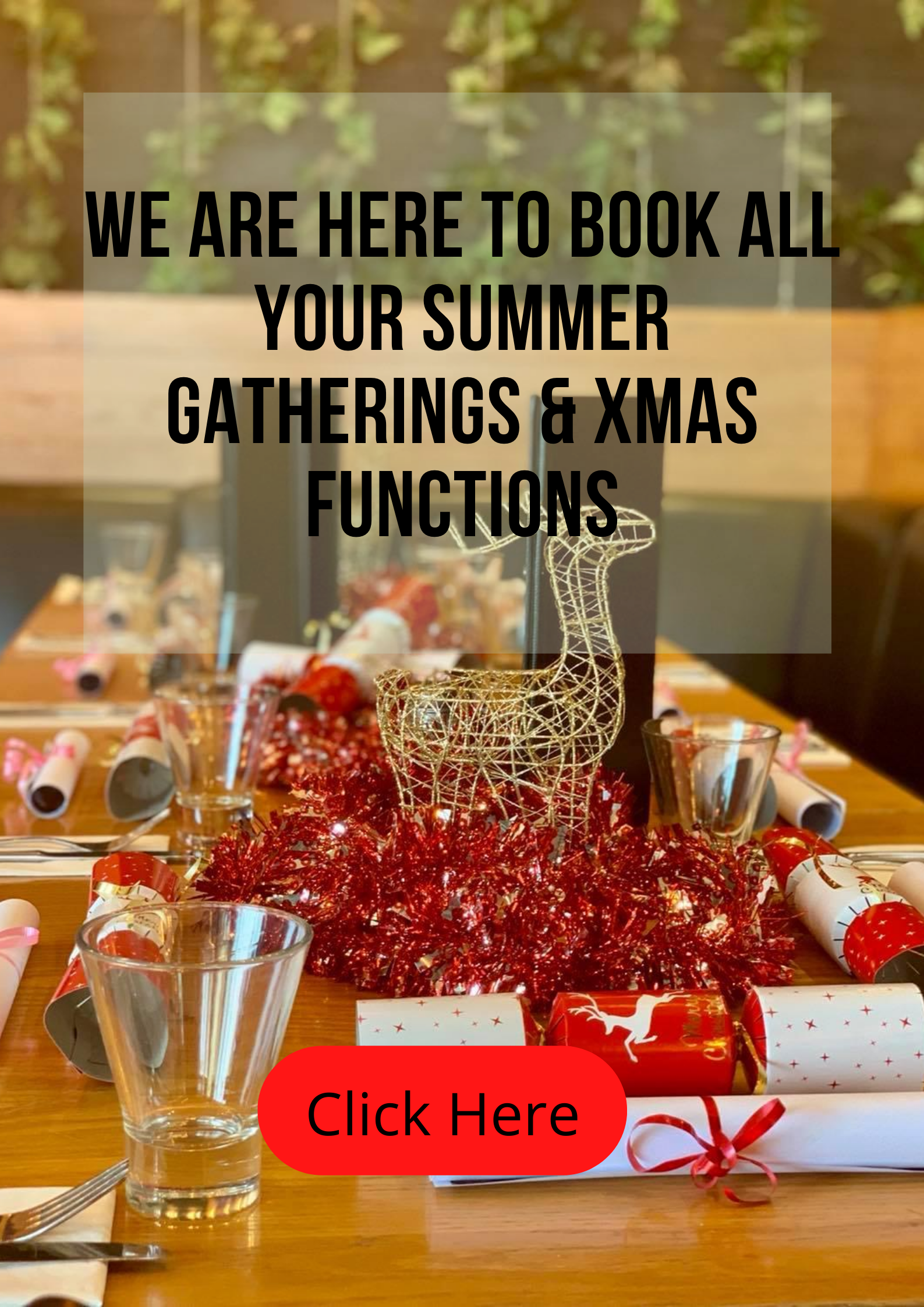 Book your christmas function with us now